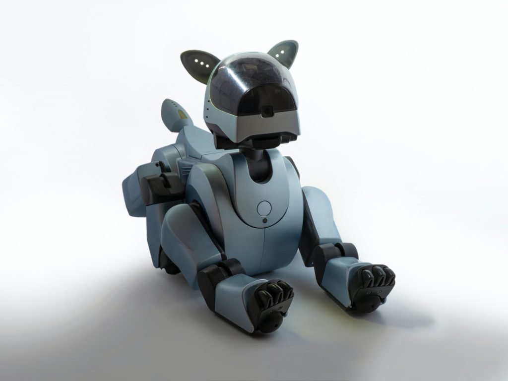 a social distancing dog robot which is a covid inspired innovation.