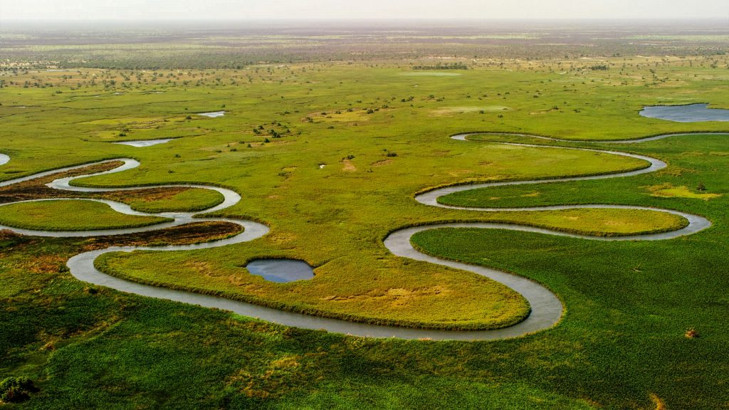 Okavango Delta in Botswana with an aerial view of the river and green land.