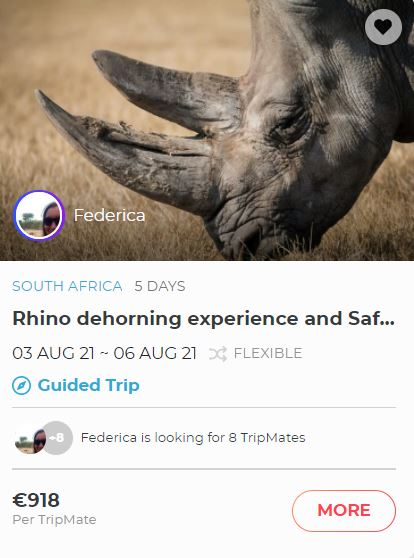 Book a trip to South Africa