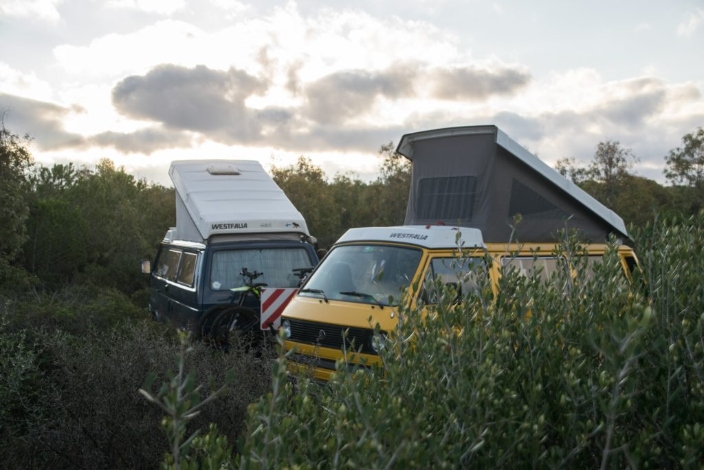 two campervans in a forest