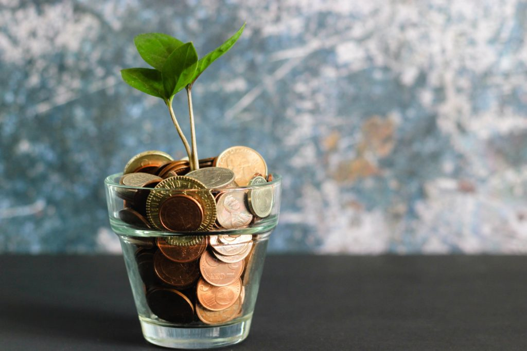 how to be the perfect trip leader - a little glass filled with money and a plant growing out of it