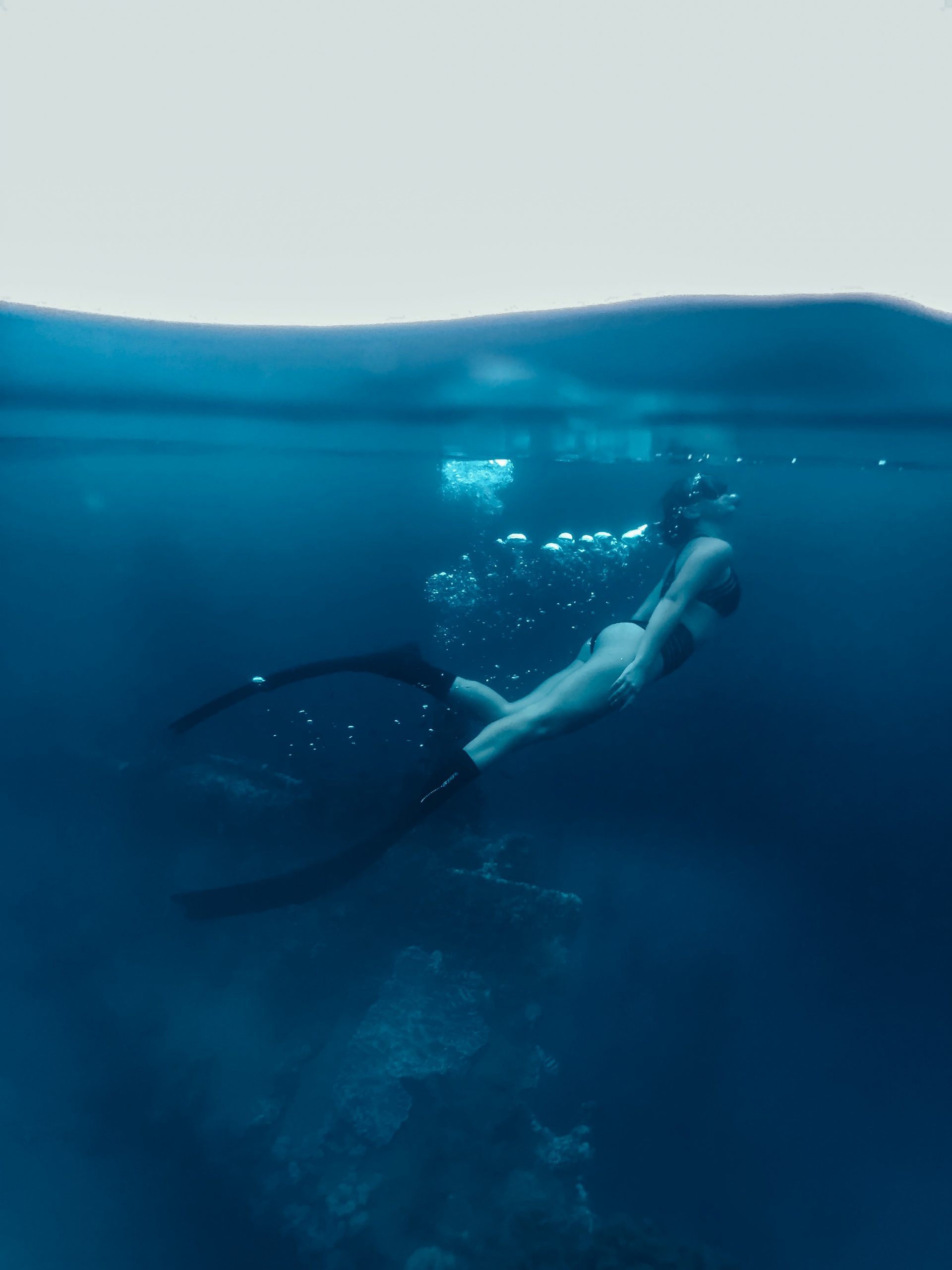 The 10 best diving spots in the world.